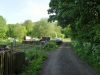 A fish and Allotments at Studios