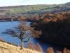 Local reservoir scene